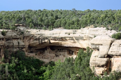Mesa Verde National Forest