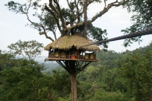 Cool Treehouse Hotel in Laos