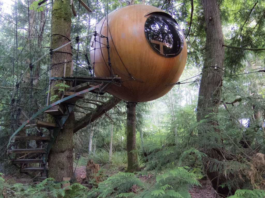 Backyard Guest House Free Spirit Spheres Extraordinary Accommodations