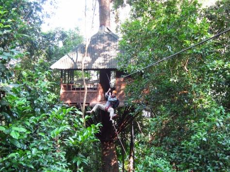 Laos Treehouse Hotel Zipline