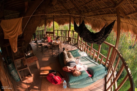 Laos Treehouse Hotel