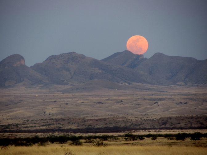 Full Moon 5