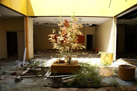 abandoned places-detroit